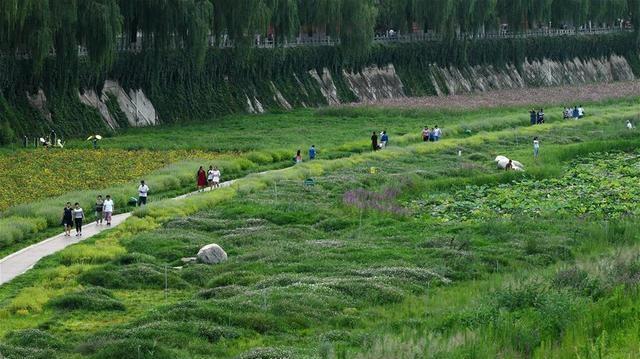 陕西延安:河道综合治理 建设绿色家园